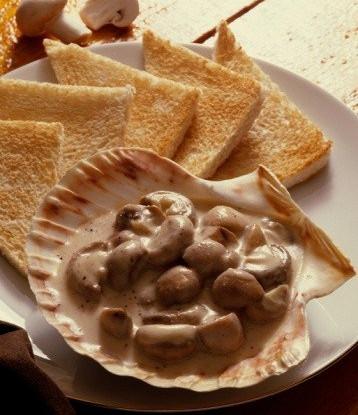 Тосты с грибами и сливочно-чесночным соусом