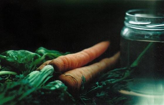 Морковный суп с крутонами