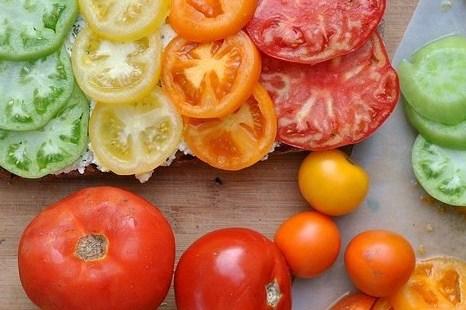 Брускетта с помидорами и творожной намазкой из базилика