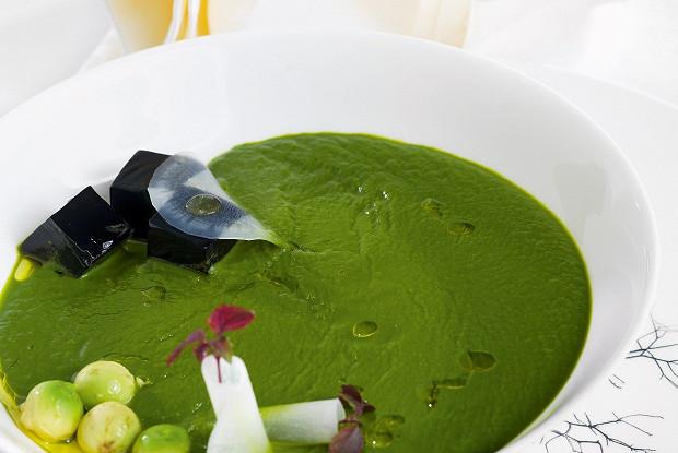 Суп из щавеля с желе из краснокочанной капусты