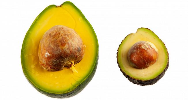 Авокадо: что из него можно сделать