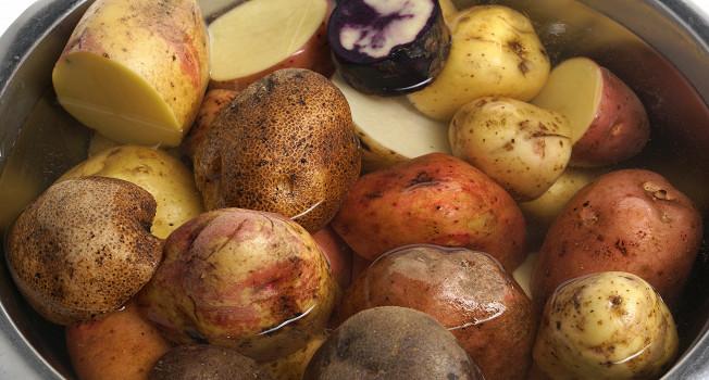 Картофель: какой он бывает