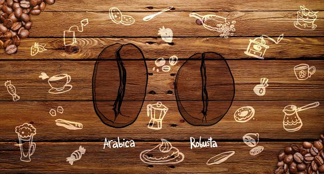 Чем арабика отличается от робусты?