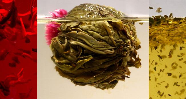 Чай полезен или вреден?
