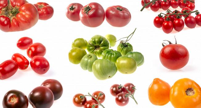 «Бычье сердце», «Махитос», бакинские и другие помидоры