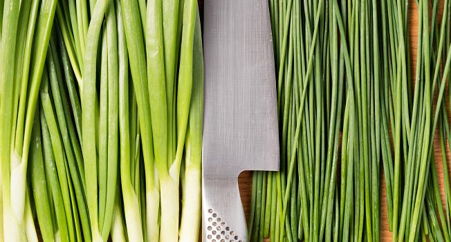 Чем шнитт-лук отличается от зеленого лука